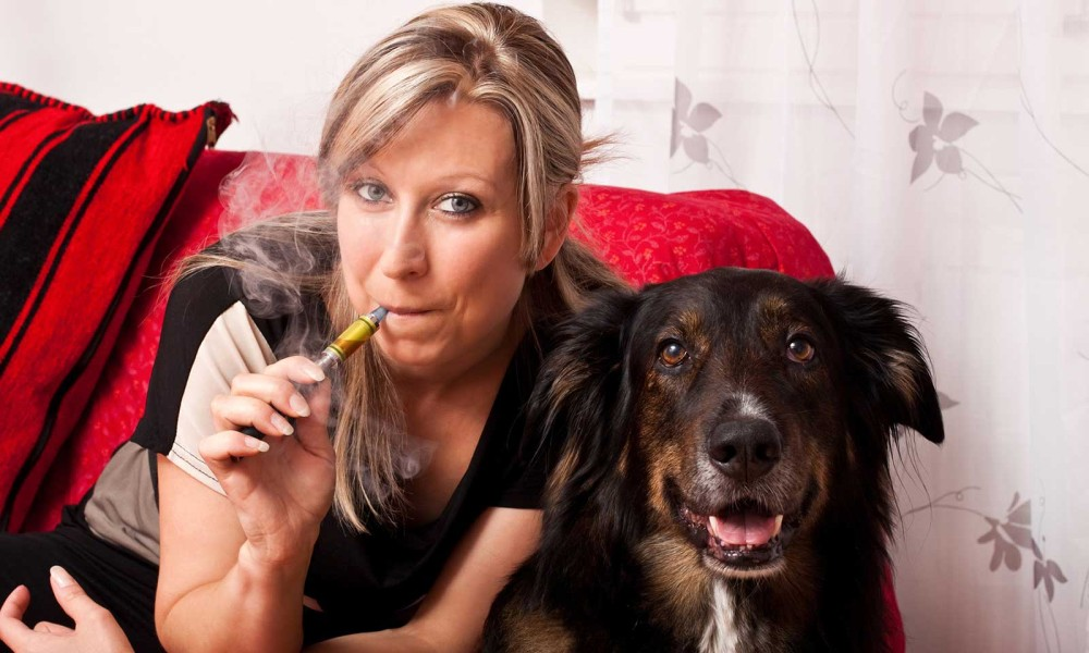 Vaping with Dog